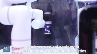 Cutting-edge robotics on display in Beijing