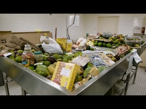 See What Really Happens To The Illegal Food Confiscated At U.S. Customs