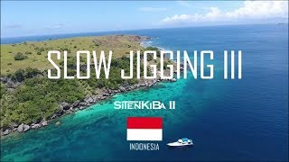 SLOW JIGGING 3 AT ALOR INDONESIA