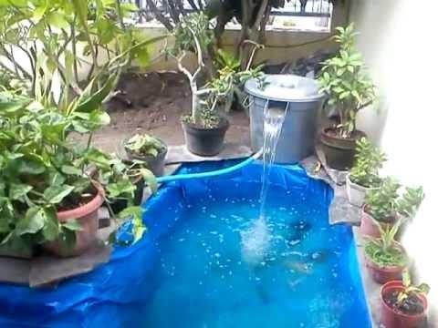 Diy my koi fish pond youtube for Diy koi fish pond