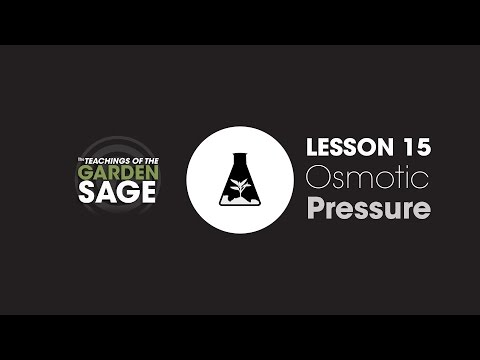 What Is Osmotic Pressure? - Lesson 15