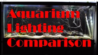 Aquarium Lighting Comparison LEDs and Fluorescent