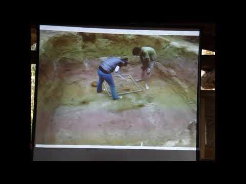 Раскопки курганов лесной группы в Гнёздово 2017.