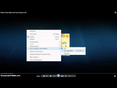Video - How to view lyrics in wmp windows media player