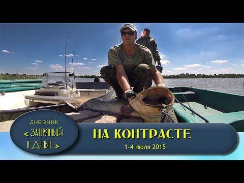 ловля сома в августе в астрахани видео
