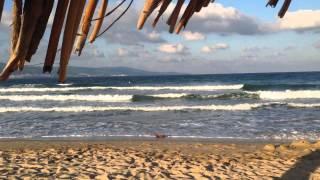 Болгария - Бургас - Солнечный берег - Harmony Suites - недвижимость напрямую от застройщика!(, 2014-10-20T07:39:17.000Z)