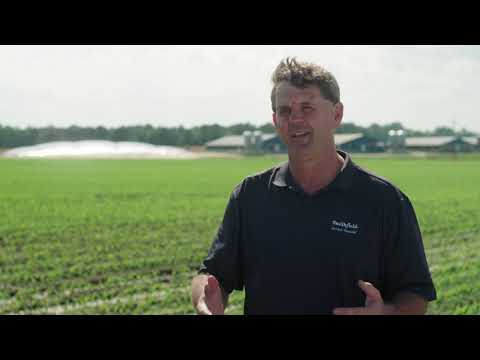 Smithfield Foods Marks Successful Initial Phase of Manure-to-Energy Program