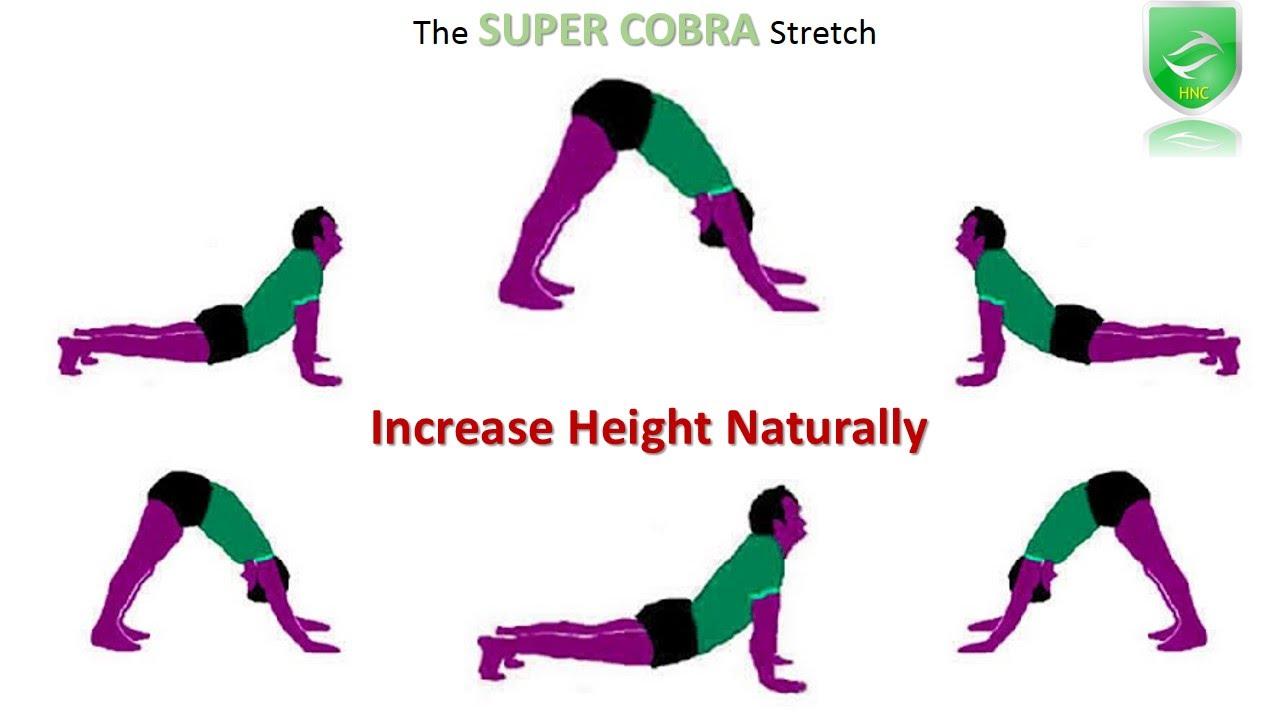 Height increase exercise images