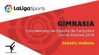 📺 Campeonato de España de Conjuntos Gimnasia Rítmica Divina Pastora 2018 - Sábado mañana thumbnail