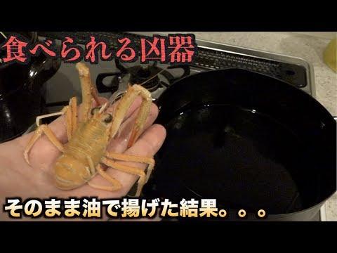 口内出血www食べられる凶器クモエビをそのまま油で揚げた結果。。。