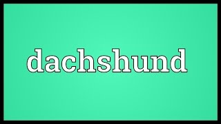 Dachshund Meaning