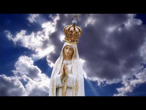 Message of Our Lady delivered on May 13, 2019 in São José dos Pinhais/PR