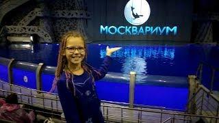"""Шоу """"Тайна четырёх океанов"""" (обзорное видео). Мосаквариум"""