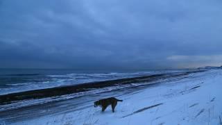Тихий океан, Халактырский пляж, Камчатка 2017 г.