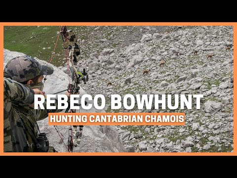 BOWHUNTING CANTABRIAN CHAMOIS - LESSONS - MOUNTAIN HUNTING IN PICOS DE EUROPA FOR REBECO