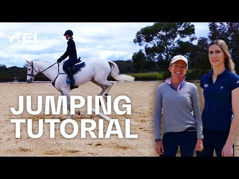 3 Jump Exercises For Every Rider W/ Han Equestrian & Amanda Ross | Vlogs