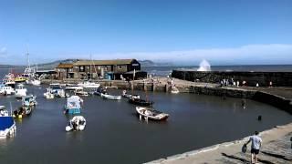 Lyme Regis 2015  - Pitt White - Windy Cobb