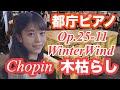 【都庁ピアノ】超絶!ショパンの「木枯らし」を弾いてみた!/Chopin/WinterWind:w32:h24