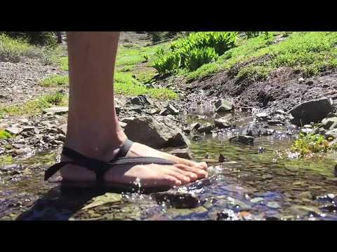 a721a9601a7c7 Earth Runners Sandals in Action - YouTube