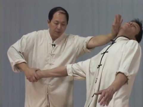Tai Chi Chin Na (YMAA Qin Na) Dr. Yang, Jwing-Ming - Taijiquan joint locks en streaming