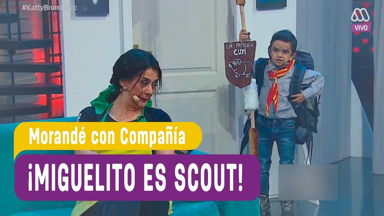 Miguelito es scout   Morandé con Compañía 2016