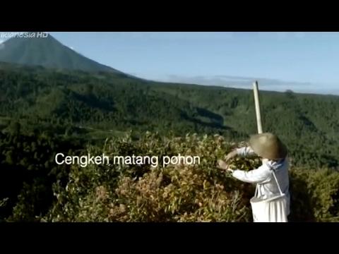 Iklan Djarum Coklat - Anugerah Alam Indonesia 60s (2014)