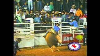 Bandido the best rodeo bull of all time