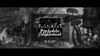 Mr Traumatik - Psychedelic enlightenment