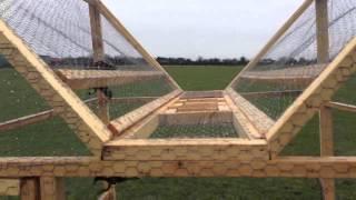 Ladder trap