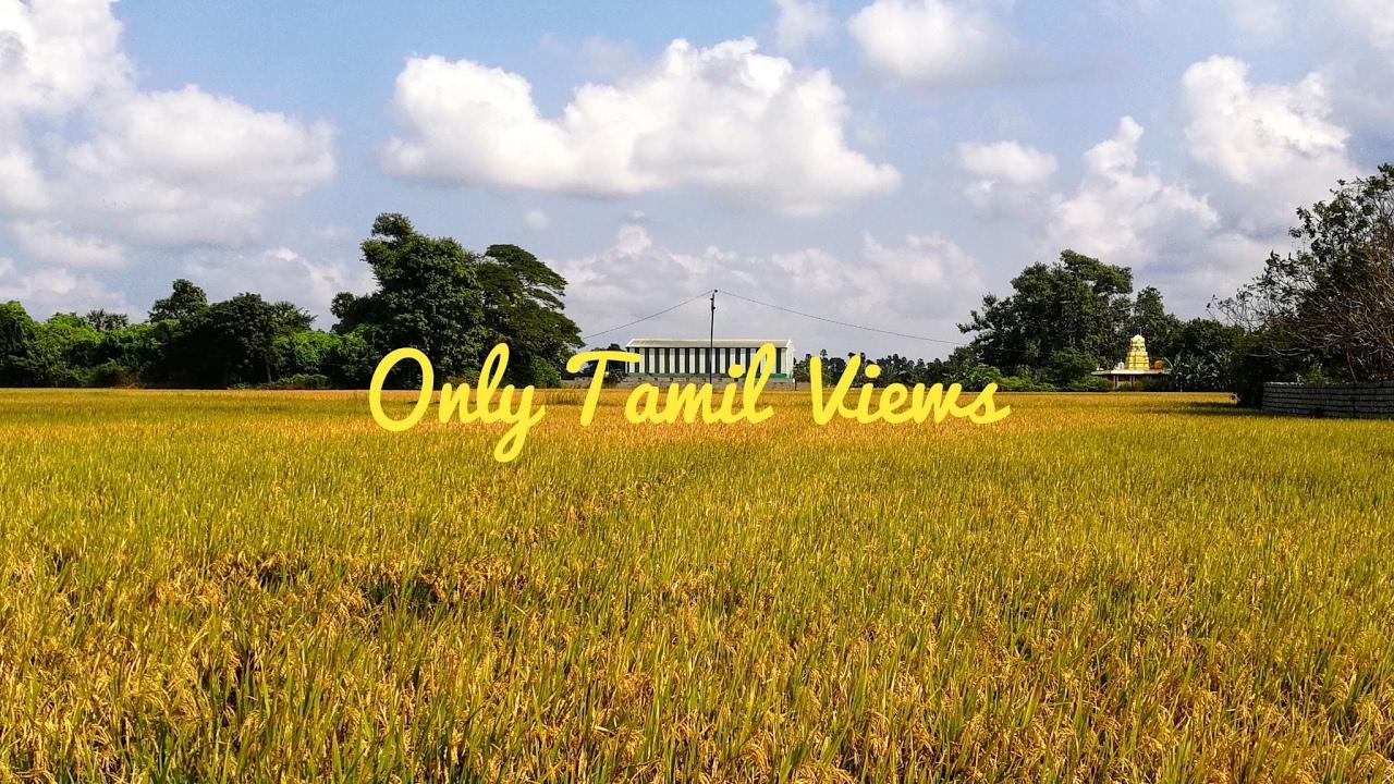 Only tamil views live stream youtube only tamil views live stream altavistaventures Gallery