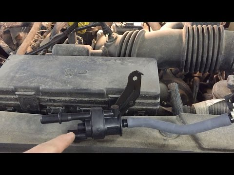 Ford Quick Tips: #37 Ford F-150 Dies Out Canister Purge Valve Failures