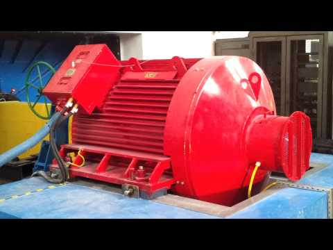 Run-up of large (1100kW, 500rpm) Line Start Permanent Magnet Synchronous Motor
