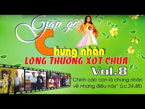 Chứng Nhân LÒNG THƯƠNG XÓT CHÚA-DVD VOL.8 - Lm.Giuse Trần Đình Long-Muoichodoi.info