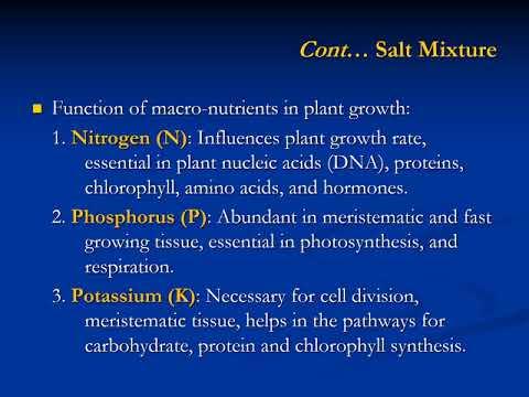 IB6043 Plant Tissue Culture: Principles of Media Design 01