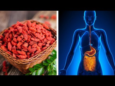 7 Amazing Goji Berries Health Benefits | Nutrition Facts