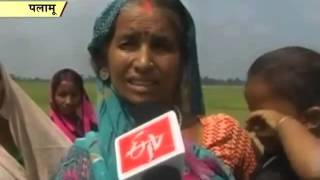 With no rains for three years, Palamu farmers demand relief package