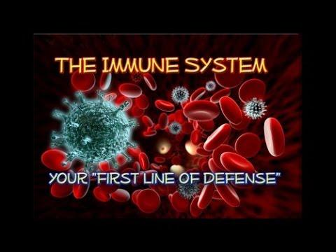 Nutrition Talks: Autoimmune Disorders with Dr. Kathryn May & Meg Davis - Sept 7, 2014