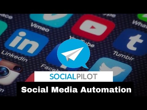 Free Social Media Automation Tool | How To Use Social Pilot | How to Automate Social Media Posts