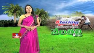 Telangana Brand Mango Export to Dubai | Organic Farming Tips | Nela Talli | HMTV