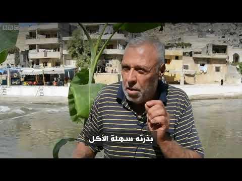 أنا الشاهد: المهرجان السنوي لتسويق الرمان في سوريا  - نشر قبل 2 ساعة
