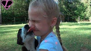 МЕГА СЮРПРИЗ ДЛЯ ДЕТЕЙ 2017 ВЫБОР ДОМАШНЕГО ПИТОМЦА Видео для детей Kids surprise funny video