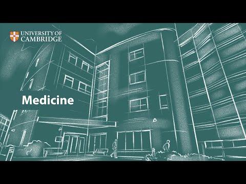 Medicine | Undergraduate Study