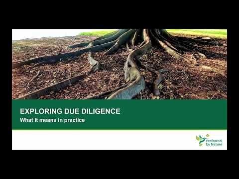 PART 1 Exploring due diligence: what does it mean in practice
