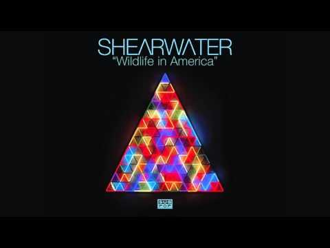 Shearwater - Wildlife in America