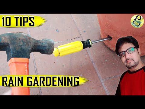 RAINY SEASON GARDENING TIPS – TOP 10 MONSOON GARDEN TIPS  & Hacks for Home Gardening