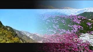 青い山脈 藤山一郎さん  奈良光枝 さん 原曲 thumbnail