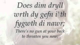 Evelyn - Cerys Matthews (geiriau / lyrics)