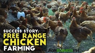 Free Range Chicken Farming Success Story- Agribusiness Season 1 Episode 10 Part 3