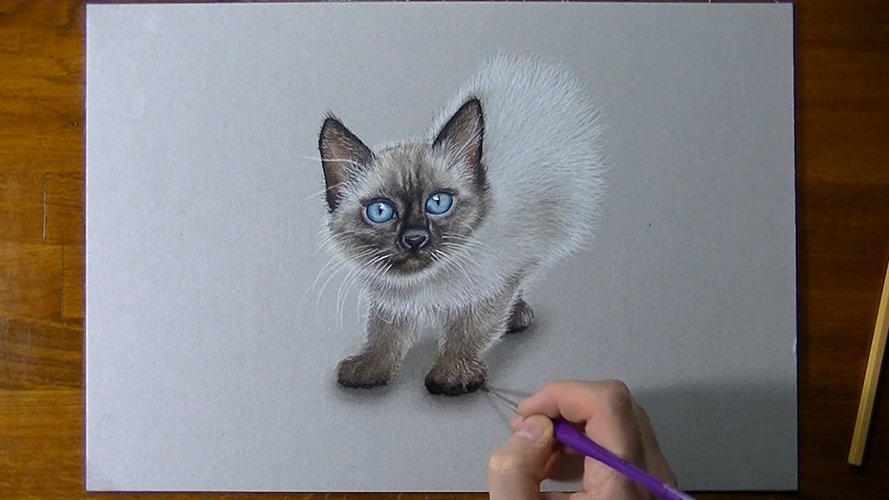 how to draw striped kitten