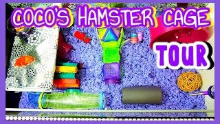 Coco's HAMSTER Cage Tour | January 2015 Thumbnail